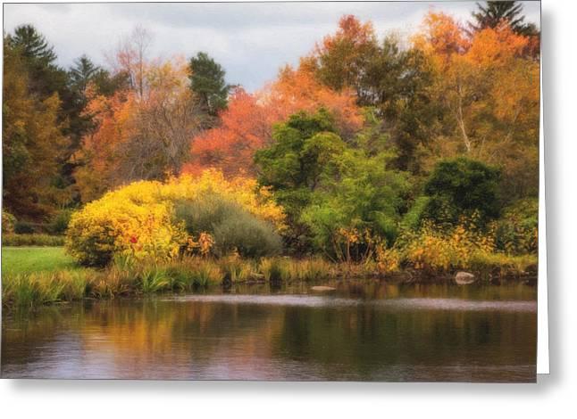 Across The Pond Greeting Card by Tom Mc Nemar