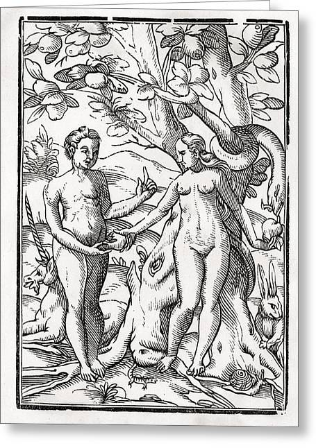 Bale Drawings Greeting Cards - Adam And Eve In The Garden Of Eden From Greeting Card by Vintage Design Pics