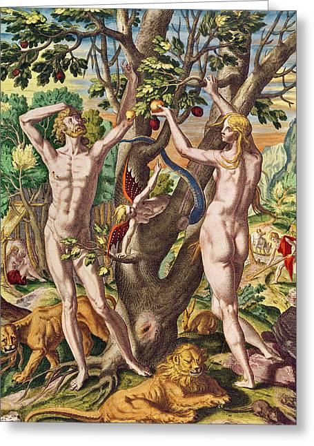 Adam And Eve Greeting Card by Theodore de Bry