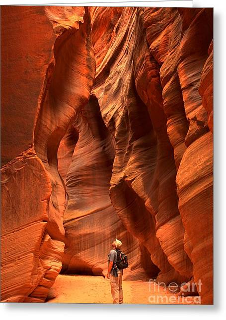 Utah Slot Canyon Greeting Cards - Adam Jewell In Buckskin Slot Canyon Greeting Card by Adam Jewell