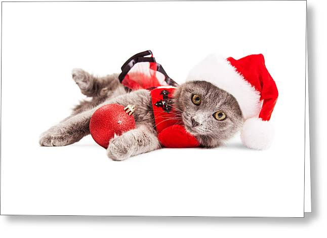Adorable Christmas Kitten Over White Greeting Card by Susan Schmitz