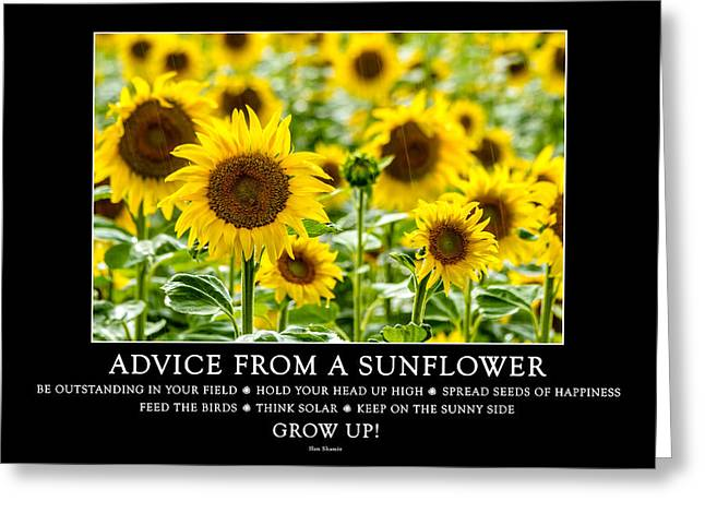 A Sunny Morning Greeting Cards - Advice from a Sunflower Greeting Card by Teri Virbickis