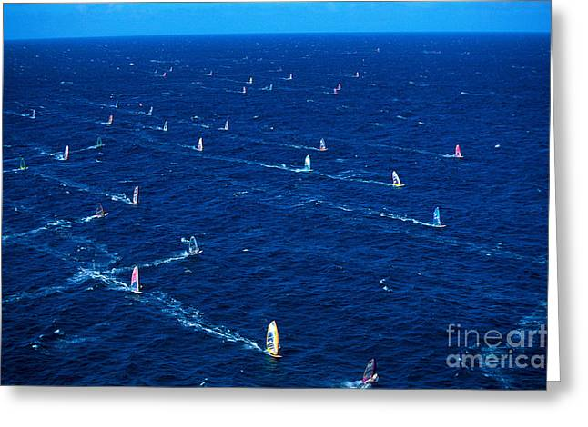 Far Above Greeting Cards - Aerial View Of Windsurfer Greeting Card by Erik Aeder - Printscapes