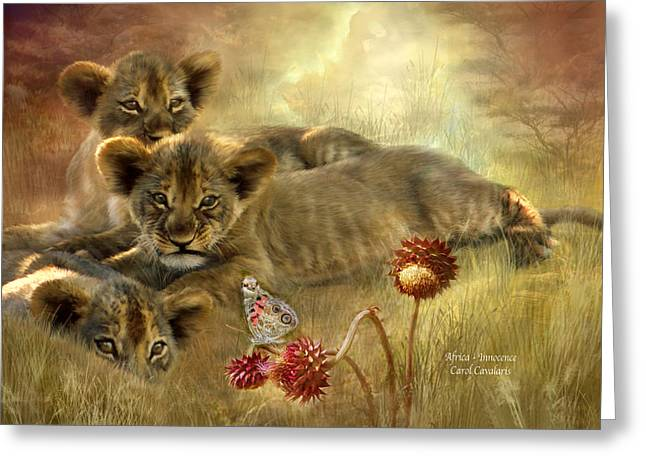 Africa - Innocence Greeting Card by Carol Cavalaris