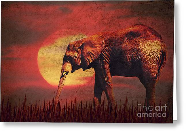 Animals Mixed Media Greeting Cards - African elephant Greeting Card by Angela Doelling AD DESIGN Photo and PhotoArt