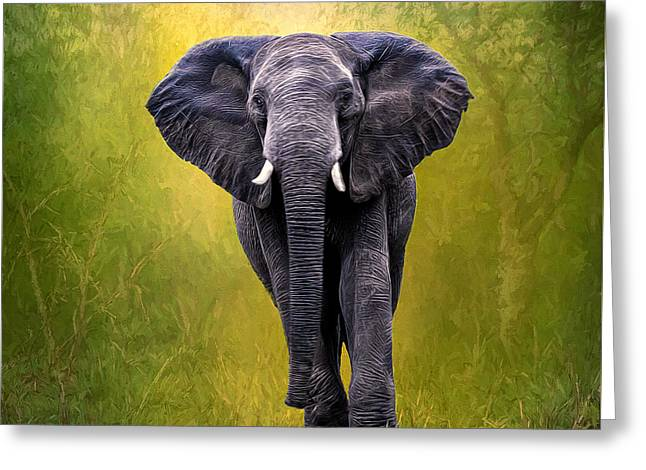 Game Greeting Cards - African Elephant Greeting Card by Maria Coulson