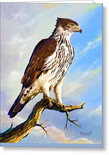 African Hawk Eagle Greeting Card by Anthony Mwangi