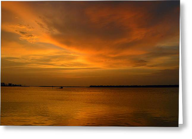 After A Good Day Greeting Card by David Lee Thompson
