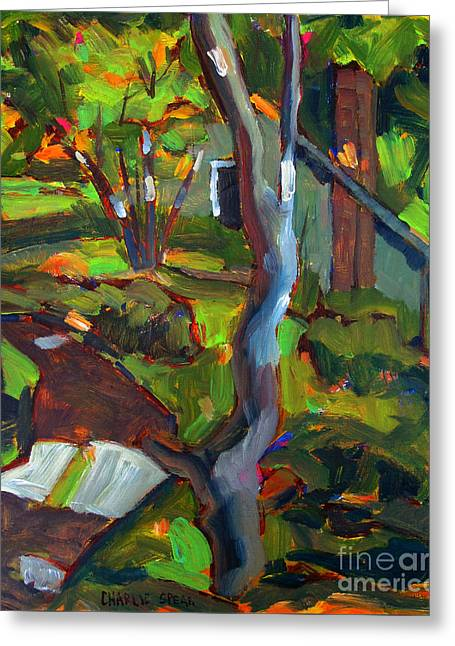 Dappled Light Greeting Cards - After Cezanne Tannas Lane Greeting Card by Charlie Spear