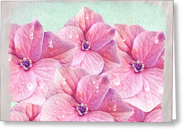 Pinks And Purple Petals Photographs Greeting Cards - After the Rain Greeting Card by Laura D Young