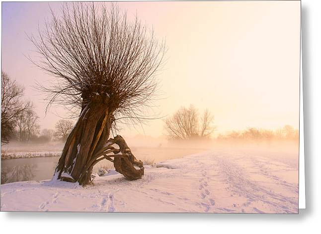 After The Snow Comes The Glow Greeting Card by James Tully