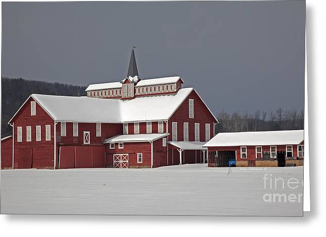 Winter Storm Greeting Cards - After The Storm Red Barn Greeting Card by John Stephens