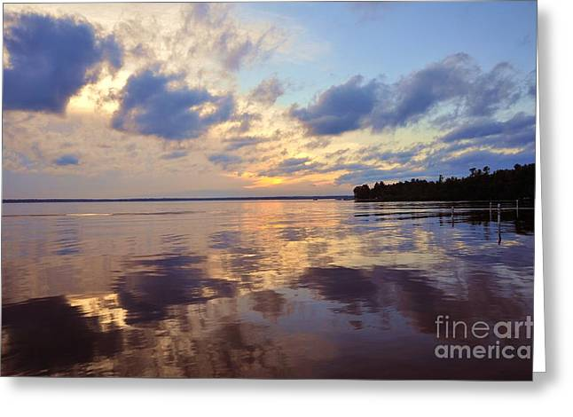 After The Storm Greeting Card by Terri Gostola