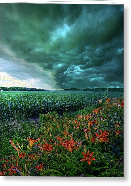 After Thought Greeting Card by Phil Koch
