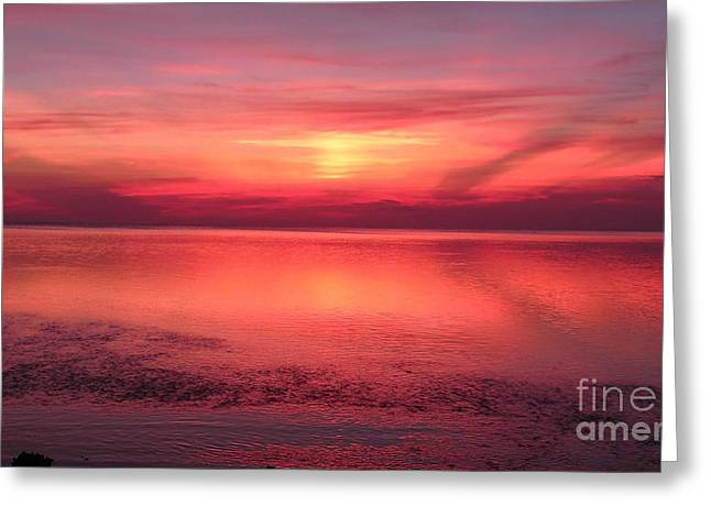 Docked Boat Greeting Cards - Afterglow  Greeting Card by Gina Welch