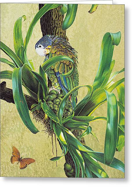 Amazon Greeting Card Greeting Cards - Afternoon Delight Card  Greeting Card by Carole Niclasse
