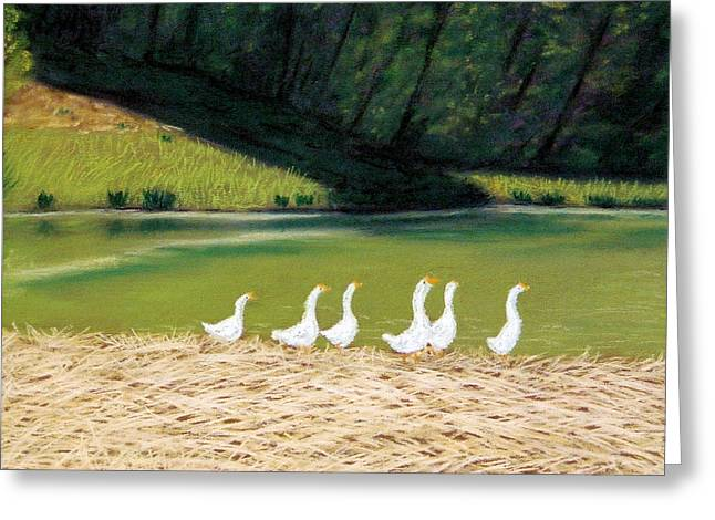 Afternoon On Goose Pond Greeting Card by Jan Amiss