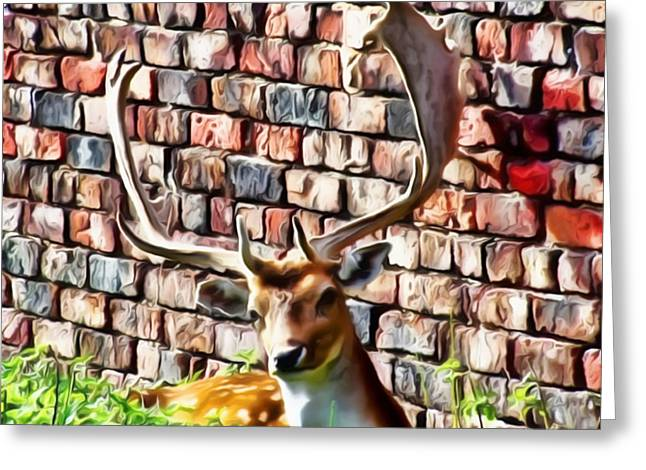 Harts Digital Greeting Cards - Against The Wall Greeting Card by Isabella F Abbie Shores LstAngel Arts