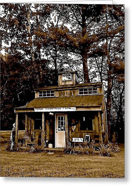 Log Cabins Greeting Cards - Agape Homestead Farm Greeting Card by Elizabeth Tillar