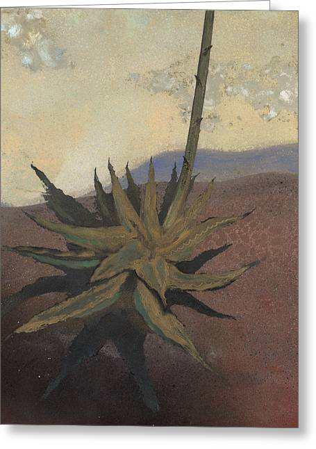 Agave Greeting Card by Fred Chuang