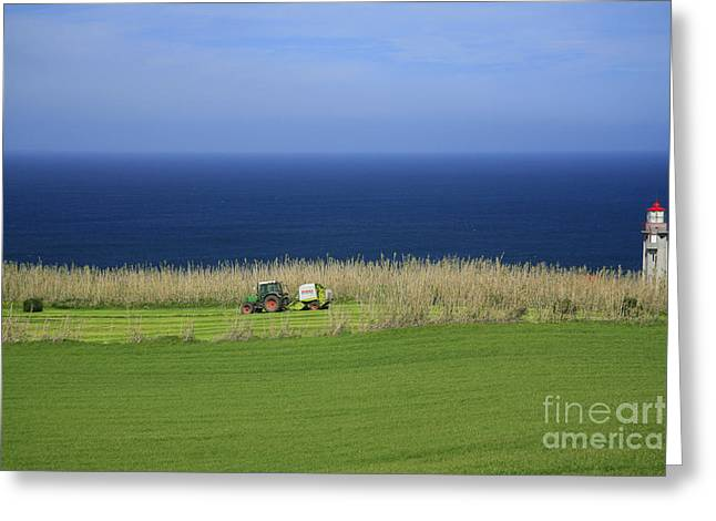 Lighthouse By The Sea Greeting Cards - Agricultural works Greeting Card by Gaspar Avila