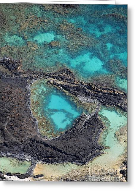 Perouse Greeting Cards - Ahihi Kinau Natural Preserve Greeting Card by Ron Dahlquist - Printscapes