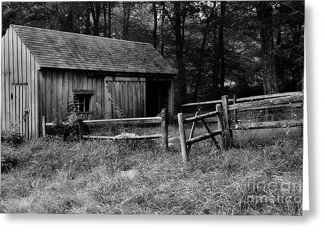 Litchfield County Greeting Cards - Aint Broke-Dont fix it Greeting Card by Thomas Schoeller