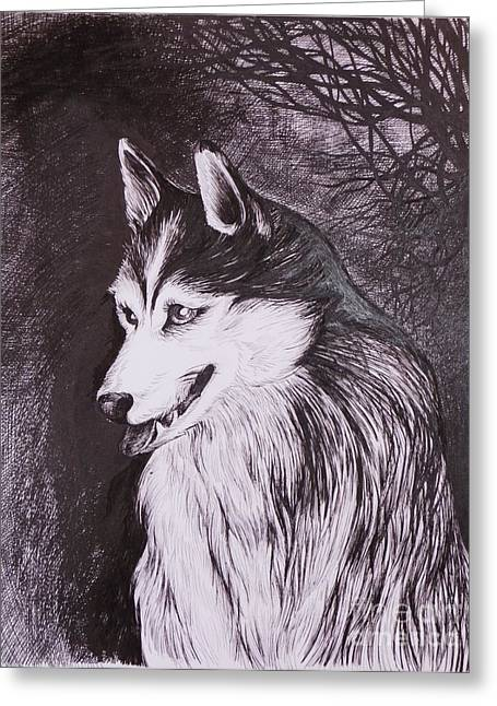 Husky Drawings Greeting Cards - Akela Greeting Card by Anna  Duyunova