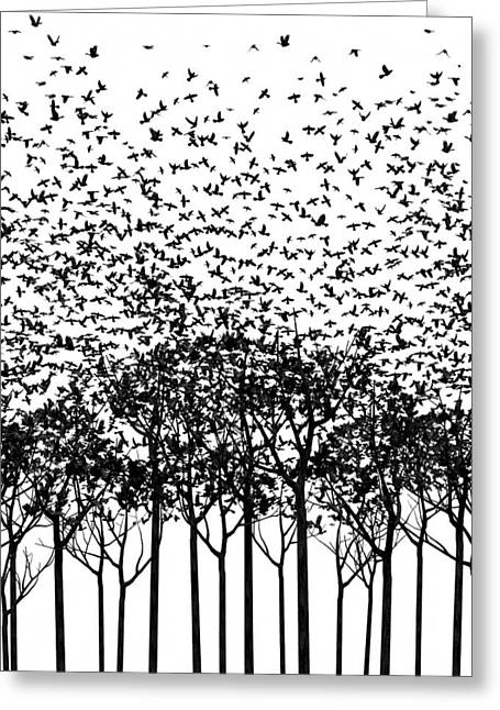 Winter Crows Greeting Cards - Aki Monochrome Greeting Card by Cynthia Decker
