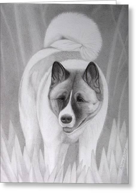 Guard Dog Drawings Greeting Cards - Akita Jazz Greeting Card by Karen Wood