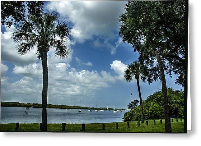 Sailboat Images Greeting Cards - Alafia River Anchorage Greeting Card by Norman Johnson