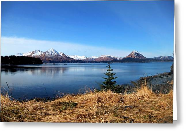 Alaska Lake Greeting Card by Kevin Hill