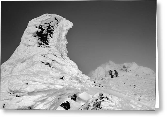People Greeting Cards - Alaska Range Alpine Stone Pillars Greeting Card by David Broome