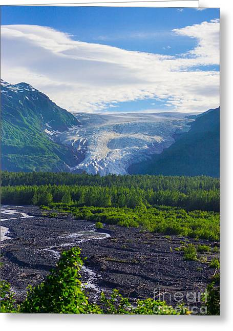 Alaskan Canvas Art Prints Greeting Cards - Alaskan Glacier Valley Greeting Card by Jennifer White