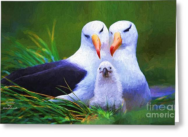 Tern Greeting Cards - Albatross Family  Greeting Card by Garland Johnson