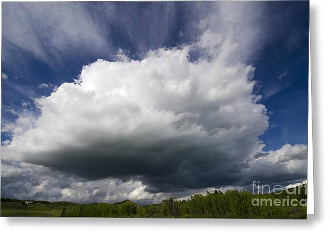 Alberta Foothills Landscape Greeting Cards - Alberta Bound 2 Greeting Card by Bob Christopher