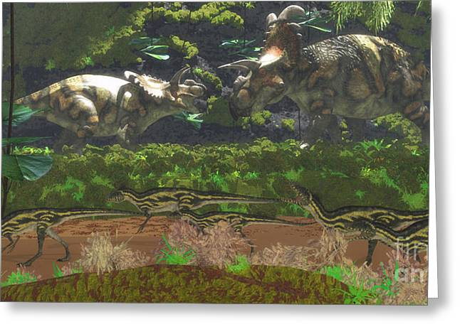 Northern Africa Greeting Cards - Albertaceratops Disagreement Greeting Card by Corey Ford