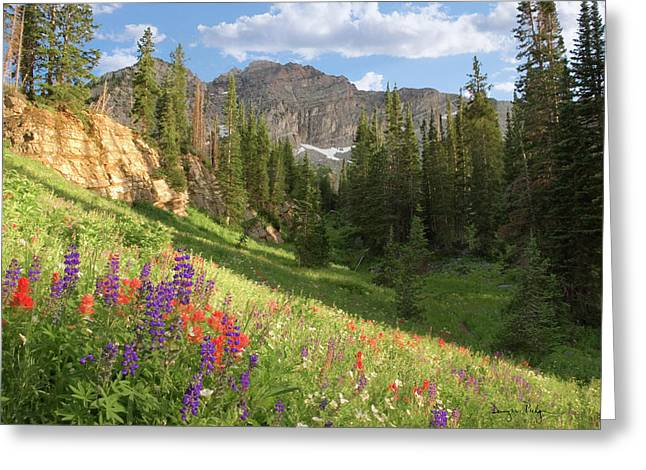 Spectacular Greeting Cards - Albion Basin Wasatch Mountains Utah Greeting Card by Utah Images