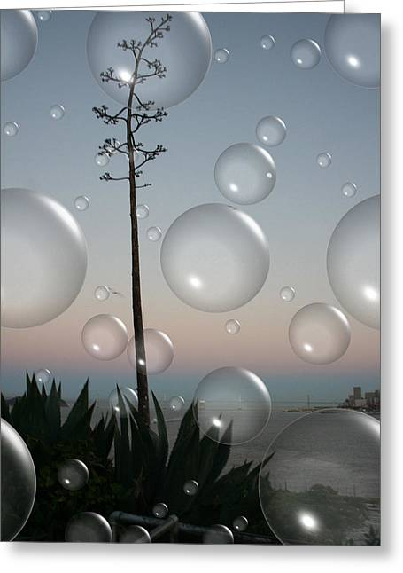 Alcatraz Greeting Cards - Alca Bubbles Greeting Card by Holly Ethan