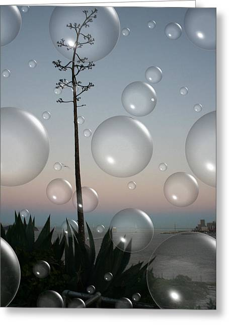 Alca Bubbles Greeting Card by Holly Ethan