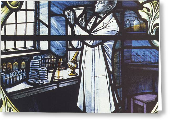 Alexander Fleming, Scottish Biologist Greeting Card by Science Source
