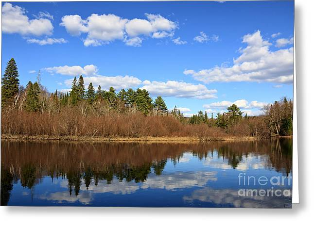 Reflections In River Greeting Cards - Algonquin Spring Clouds Greeting Card by Charline Xia