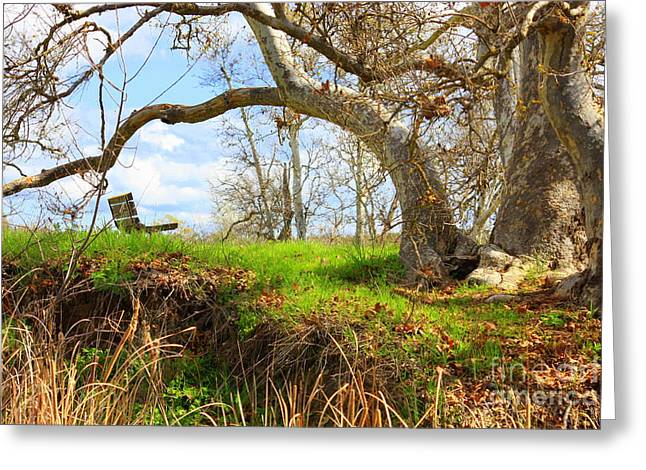 Livermore Greeting Cards - Alices Wonderland Greeting Card by Carol Groenen