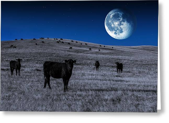 Alien Cows Greeting Card by Todd Klassy