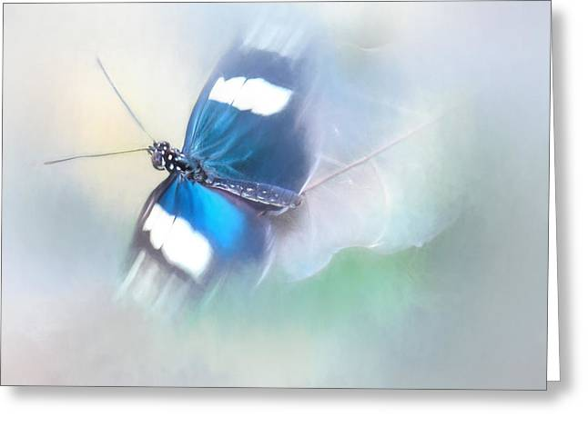 Flying Insects Greeting Cards - All a Flutter Greeting Card by David and Carol Kelly