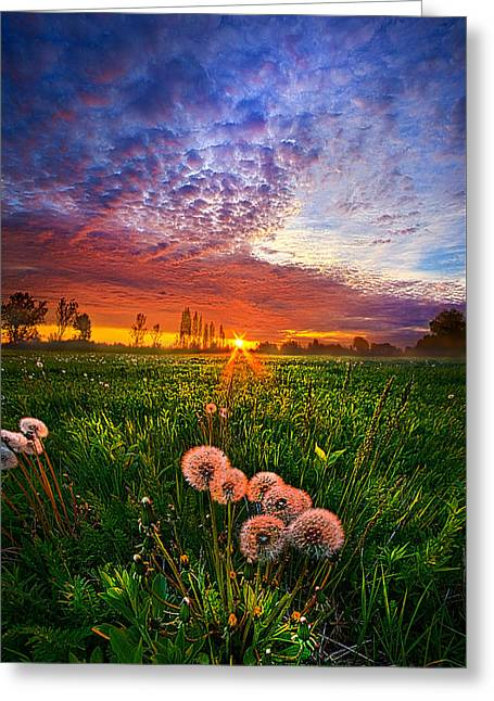 Life Line Greeting Cards - All Changeful As The Light  Greeting Card by Phil Koch