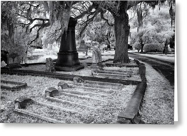 Grave Side Greeting Cards - All In A Rolw Greeting Card by Cindy Archbell