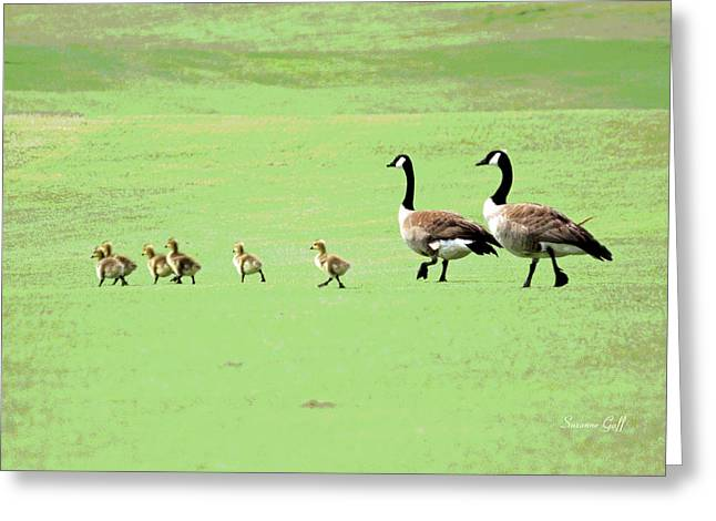 Geese Greeting Cards - All in the Family II Greeting Card by Suzanne Gaff