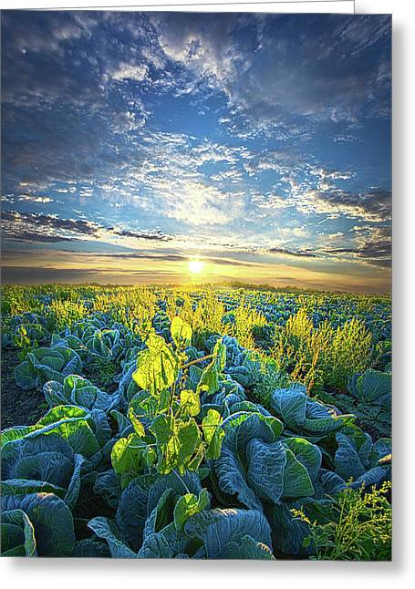 All Joined As One Greeting Card by Phil Koch