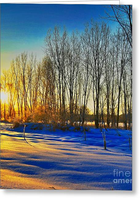 Cold Morning Sun Greeting Cards - All that color Greeting Card by Robert Pearson